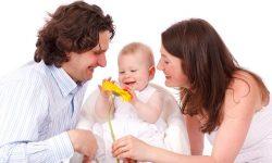 baby_17342_640_1